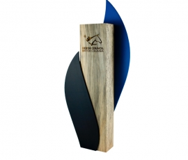 Woodaward2-2